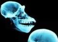 В Перми нашли младенца, принесенного в жертву 25 веков назад