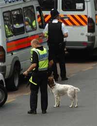 Интересы британских спецслужб и местных радикалов совпадают