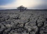 Земля уходит у людей из-под ног