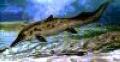 Сахалин: обнаружили на берегу Татарского пролива плеозавра?