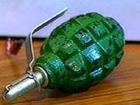 Хабаровск: на грядке обнаружили ручную гранату с взведенным