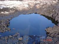 На Сахалине произошел разлив нефти. Это скрывалось
