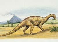 Подозреваемых в убийстве динозавров стало больше