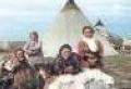 НАО: 25 августа ненецкие охотники выйдут на лося