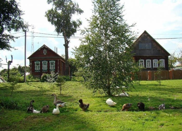 Устинов ушёл. «Единая Россия» ждёт новых отставок