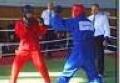 В Калининграде стартовал чемпионат мира по универсальному бою