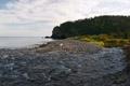 Воды Амура и Сунгари оценят хабаровские специалисты