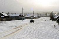 Немецкие подростки будут строить сортиры в Сибири