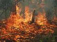 Огонь заставил красноярские поезда двигаться на повышенной