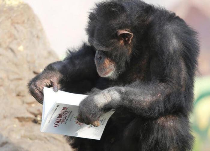 Туркменбаши обрёл свой мавзолей