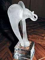 «Белый слон» прикрыл растрату?