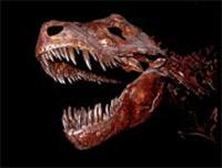 Открывается сезон охоты на динозавров