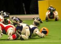 Роботы-футболисты соберутся на свой Чемпионат мира