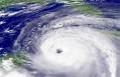 В Сочи устраняют последствия урагана