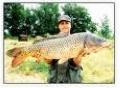 Новосибирск: вводится запрет на все виды рыбного лова на реке
