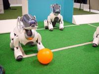 В Германии прошел 10-ый Чемпионат мира по футболу среди роботов