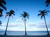 Сколько стоит остров «голливудского» архипелага?
