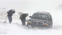 50 автомобилей засыпало снегом на воронежском участке трассы