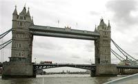К заблудившемуся в Темзе киту спешит на помощь собрат?