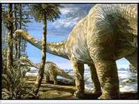 В жилах крупных динозавров играла горячая кровь