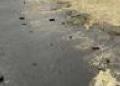 Хабаровский край: загрязнение реки Березовая