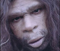 Неандертальцев сотрут в порошок ради ДНК