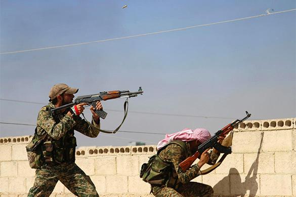 За один день в Сирии амнистировано 66 боевиков