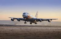 Авиакомпании смягчают правила провоза багажа