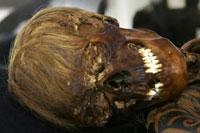 Мумия мужчины. Фото Welt-online