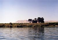 Река Нил (фото автора).