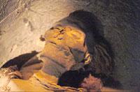 Мумия, найденная в саркофаге царской кормилицы, скорее всего
