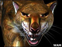 Сумчатый лев пал жертвой древнего человека