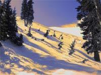 Омскую область засыпало оранжевым снегом