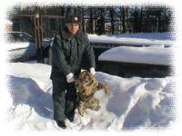 В Хабаровском крае по вине человека пострадал тигренок