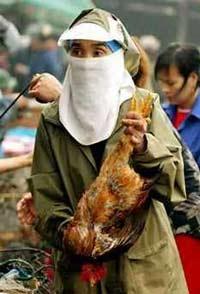 В Киргизии запретили ввоз мяса птицы из России
