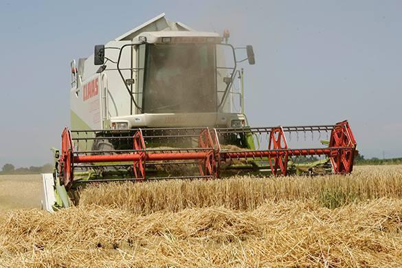 Россия готова засыпать мир зерном