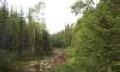 Самара-Оренбург: появится национальный парк
