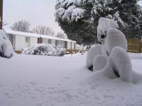 Приморье остается во власти снежного циклона