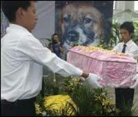 Собачьи похороны обошлись в 13 тысяч долларов