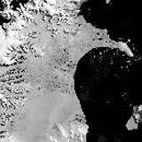 В Антарктиде обнаружена «новая жизнь»