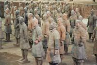 Пыльца раскрыла китайскую военную тайну