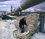 Россия экспортирует все меньше энергетического сырья