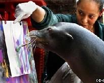 В зоопарке Питтсбурга живет уникальный живописец