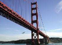 Статистика подтверждает зловещую славу моста в Сан-Франциско