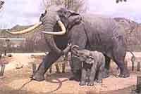 В Великобритании обнаружены останки огромного слона