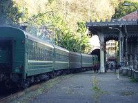 Россия возвращает железные дороги Закавказья под свой контроль?