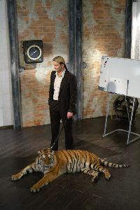 Дрессировщик выбил полмиллиона из бизнесменов при помощи тигра