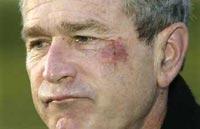 Буш запретил пытать подозреваемых в терроризме
