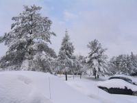 Приморье готовится к снегопаду