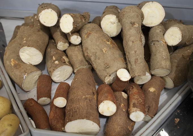 Интересное в мире Корни маниока разных размеров и форм продаются в супермаркетах Сан-Паулу. Маниок выращивается в 80 странах мира. В Бразилии его называют тупи-гуарани, а в остальной Южной Америке более известно как юка. Интересное в мире, истории